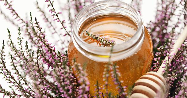 Le miel de bruyère serait-il le miel aux bienfaits antioxydants les plus efficaces ?