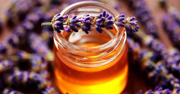 Quelles sont les caractéristique du miel de lavande et que peut-il vous apporter ?