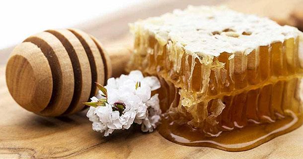 Le miel de Manuka est-il celui possédant les meilleurs bienfaits thérapeutiques ?