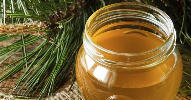 Le miel de sapin issu du miellat peut-il apporter des bénéfices à votre santé ?